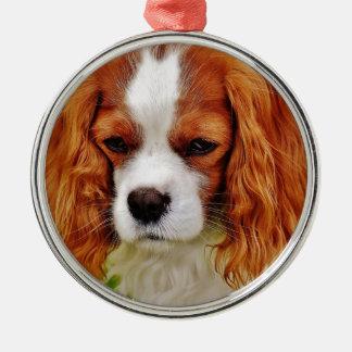 Ornamento De Metal Animal de animal de estimação engraçado descuidado