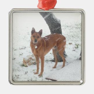Ornamento De Metal Animal de estimação da coleção do Natal ou foto de