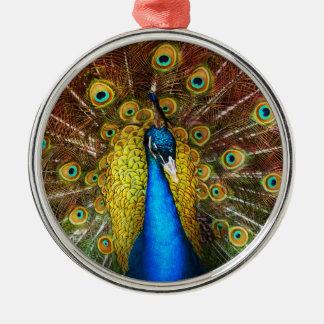 Ornamento De Metal Animal - pássaro - pavão orgulhoso