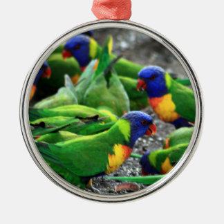Ornamento De Metal Arco-íris australiano Lorikeets