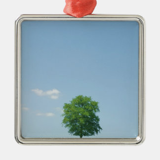 Ornamento De Metal Árvore em um campo 2