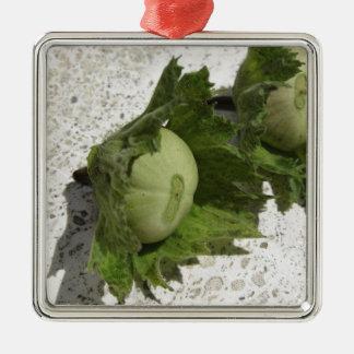 Ornamento De Metal Avelã verdes frescas no assoalho