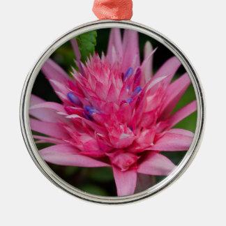 Ornamento De Metal Beleza cor-de-rosa