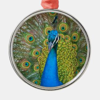 Ornamento De Metal Cabeça do azul de pavão com e penas de cauda