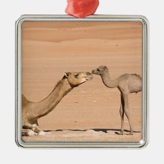 Ornamento De Metal Camelo do bebê e sua mãe