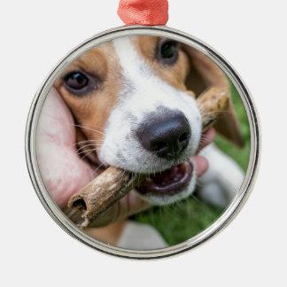 Ornamento De Metal Cão com vara