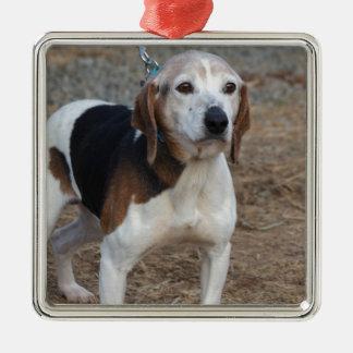 Ornamento De Metal Cão de Billy