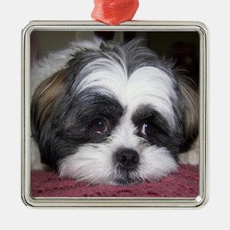 Ornamento De Metal Cão de Shih Tzu