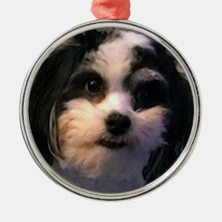 Ornamento De Metal Cão, ornamento, círculo, K-ECO