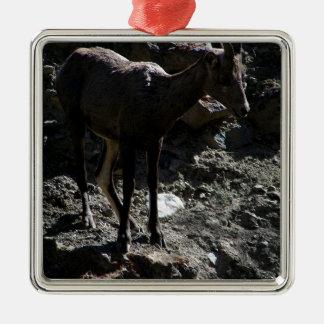 Ornamento De Metal Carneiros de Bighorn da montanha rochosa, ovelha