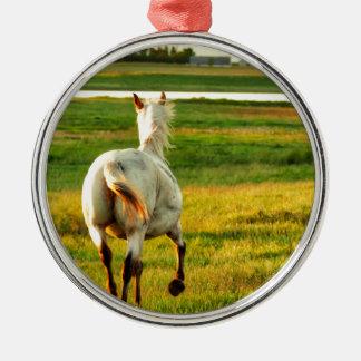 Ornamento De Metal Cavalo norte do título