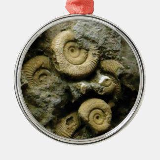 Ornamento De Metal círculos de caracóis fósseis