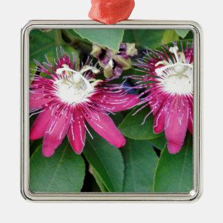 Ornamento De Metal Close up vermelho de duas flores da paixão fora na