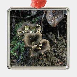 Ornamento De Metal Cogumelos de florescência