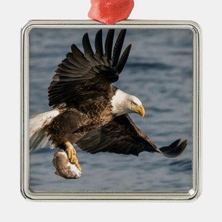 Ornamento De Metal Comida de travamento da águia americana