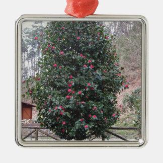 Ornamento De Metal Cultivar japonês antigo do japonica da camélia