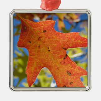 Ornamento De Metal Do outono da folha fim acima