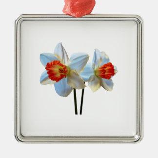 Ornamento De Metal Dois brancos e Daffodils alaranjados