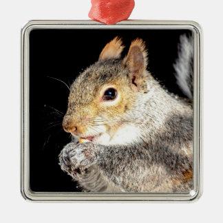Ornamento De Metal Esquilo que come uma porca
