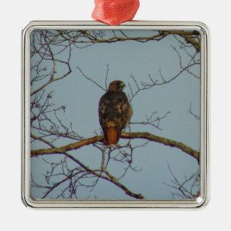 Ornamento De Metal Falcão atado vermelho