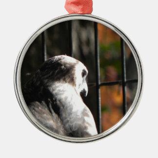 Ornamento De Metal Falcão em um santuário de pássaro