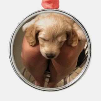 Ornamento De Metal Filhote de cachorro do sono