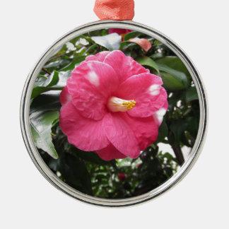 Ornamento De Metal Flor branca manchada vermelho da camélia Marmorata