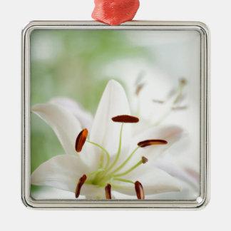 Ornamento De Metal Flor do lírio branco inteiramente aberta
