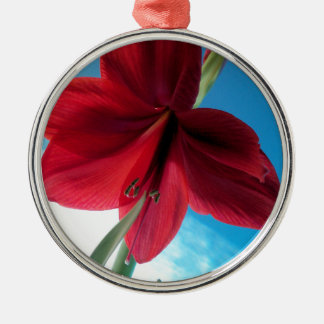 Ornamento De Metal flor vermelha vívida do Amaryllis 108a