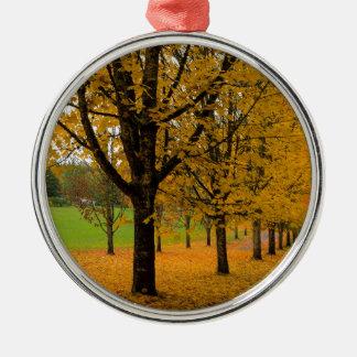 Ornamento De Metal Folhas caídas da cor da queda nos parques mmoídos