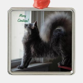 Ornamento De Metal Foto do gato de racum de Maine