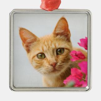 Ornamento De Metal Gatinho bonito do gato do gengibre que olha o foto