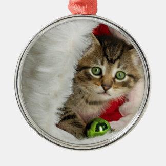 Ornamento De Metal Gato do Natal - gato do gatinho - gatos bonitos