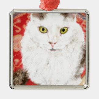 Ornamento De Metal Gato persa em um tapete persa vermelho
