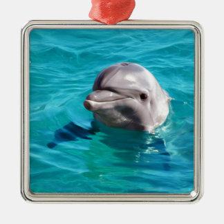 Ornamento De Metal Golfinho na foto da água azul