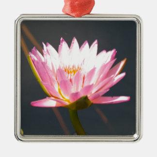 Ornamento De Metal Lotus cor-de-rosa Waterlily