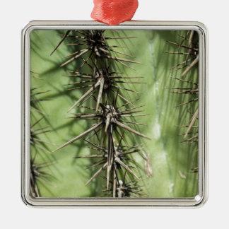Ornamento De Metal macro próximo acima dos espinhos do cacto