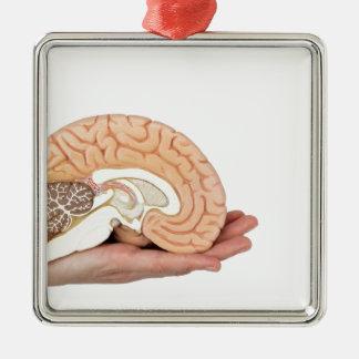 Ornamento De Metal Mão que guardara o hemisfério do cérebro no fundo