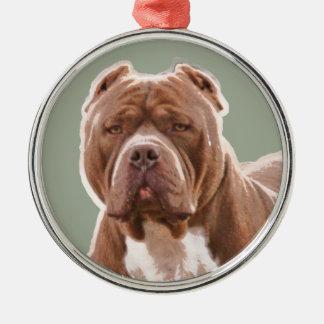 Ornamento De Metal Marrom do pitbull