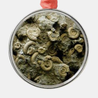 Ornamento De Metal o fóssil descasca a arte