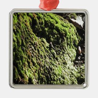 Ornamento De Metal O musgo verde no detalhe da natureza de musgo