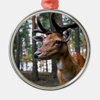 Ornamento De Metal Os cervos de Brown aproximam árvores