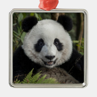 Ornamento De Metal Panda nova feliz, China