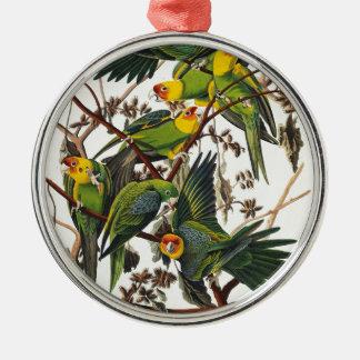 Ornamento De Metal Papagaio de Carolina - John James Audubon