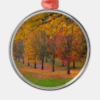 Ornamento De Metal Parque com as árvores de bordo alinhadas árvore no