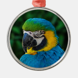 Ornamento De Metal Pássaro azul e amarelo
