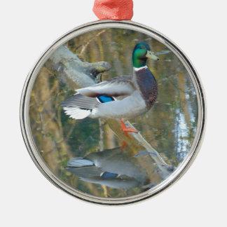 Ornamento De Metal Pato refletido