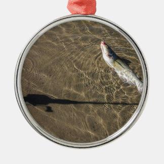 Ornamento De Metal Peixe-gato de Missouri