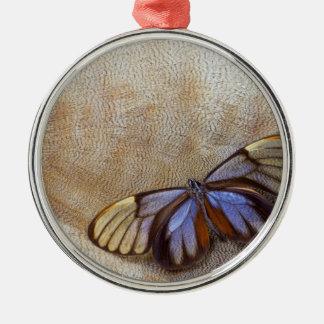 Ornamento De Metal pena egípcia do ganso da borboleta da Vidro-asa