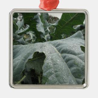 Ornamento De Metal Pingos de chuva nas folhas da couve-flor
